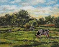 Sunlit Pasture