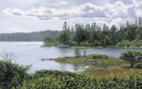 Fiddlehead Island