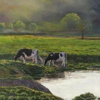 Maple Dell Holsteins - 14''