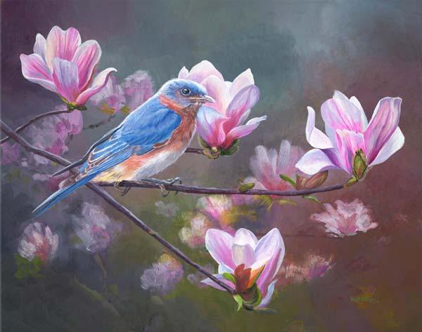 Springtime Blues - Eastern Bluebird