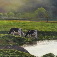 Maple Dell Holsteins - 14''