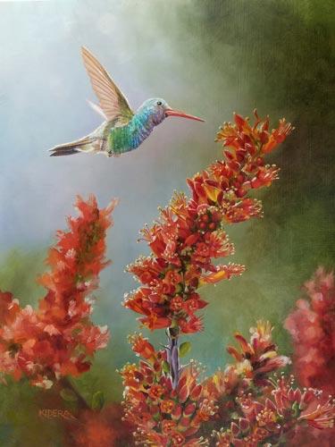 broad-billed_hummingbird_ocotillo_brendakidera_oil_10x8_large