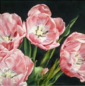 Floral Paintings Portfolio