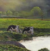 Landscape Painting Portfolio