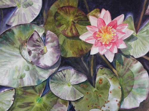 lily_light_brendakidera_watercolor_15x23_large