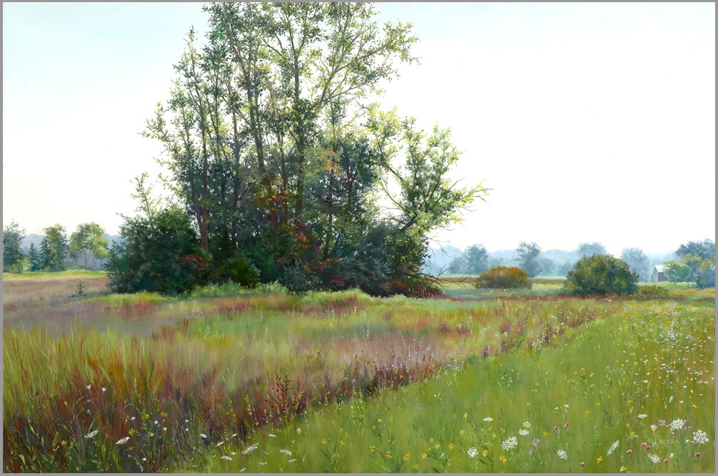 morning-meadow_brenda-kidera_oil_24x36